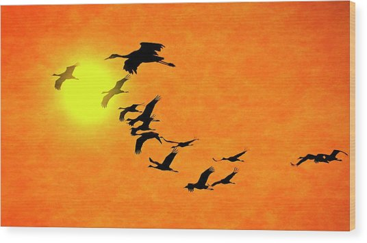 Crossing The Sun, Sandhill Cranes Wood Print