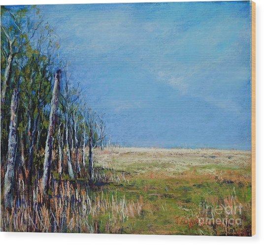 Crow Creek Glow Wood Print by Joyce A Guariglia
