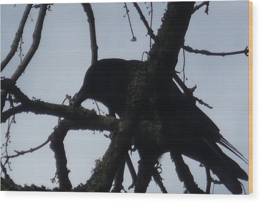 Crow Silouette Wood Print by Dawna Raven Sky