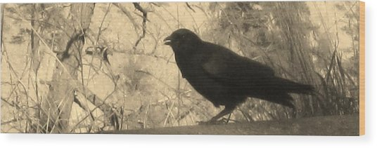 Crow Wood Print by Tracy Fallstrom