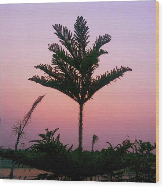 Crown In Pink Sky Wood Print