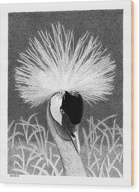Crowned Crane Wood Print