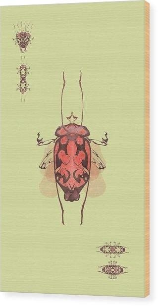 Crowned Horn Bug Specimen Wood Print