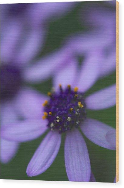 Crowned With Purple Wood Print