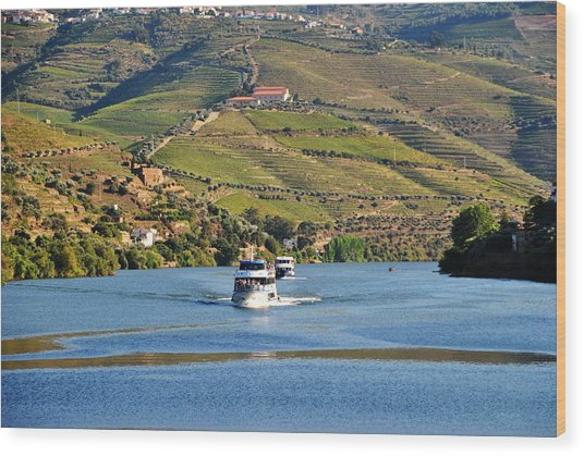 Cruising Douro River Valley Wood Print by Jacqueline M Lewis