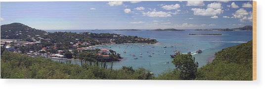 Cruz Bay Wood Print by Gary Lobdell