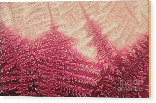 Crystal Of Ammonium Chloride Wood Print