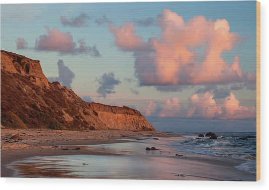 Crystal Cove Reflections Wood Print