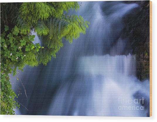 Crystal Creek Waterfalls Wood Print