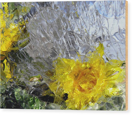 Crystal Flowers Wood Print