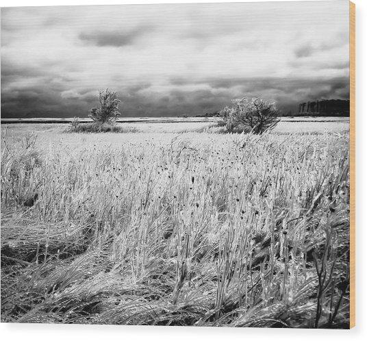 Crystal Grass Wood Print
