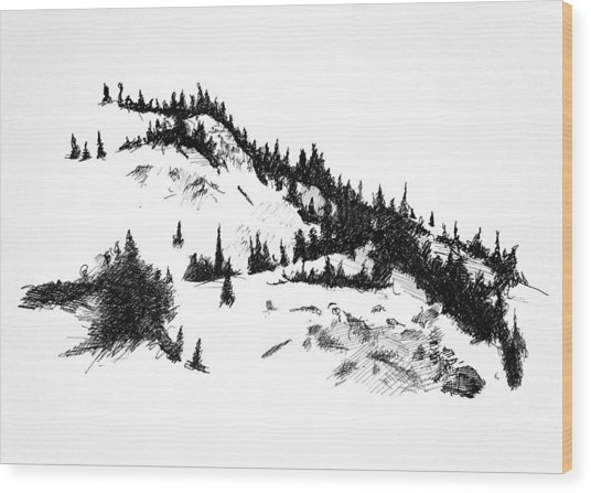 Crystal View Wood Print by Paul Illian