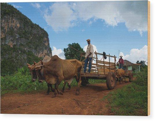 Cuban Worker II Wood Print