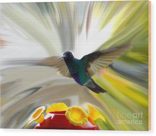Cuenca Hummingbird Series 1 Wood Print