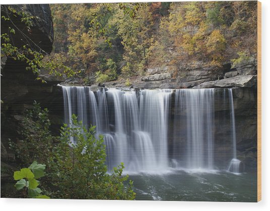 Cumberland Falls In Green Wood Print by Bj Hodges