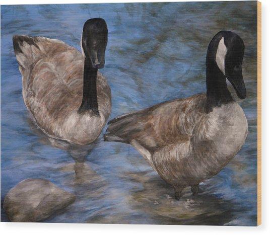 Curious Geese Wood Print