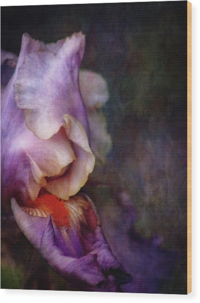 Curled 1287 Idp_2 Wood Print