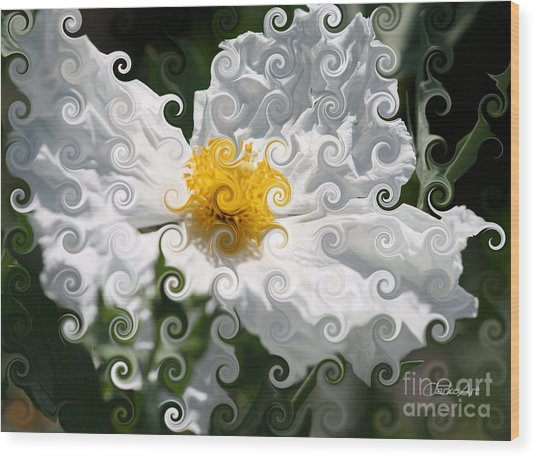 Curlicue Fantasy Bloom Wood Print