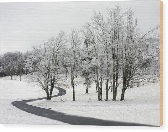 Mac Rae Field Curved Path Wood Print
