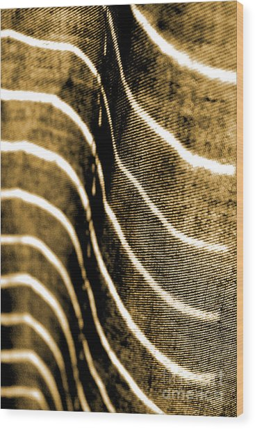 Curves And Folds Wood Print