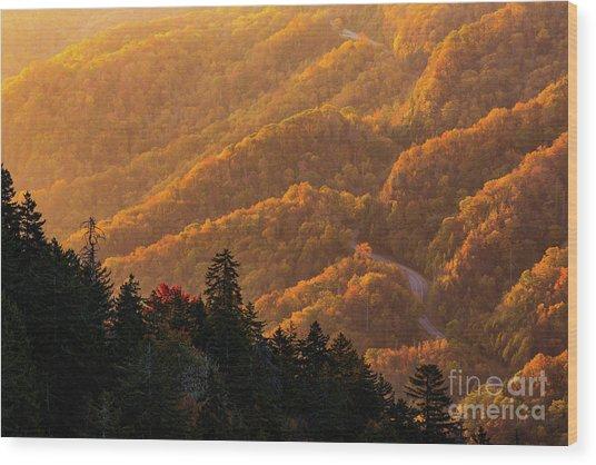 Smoky Mountain Roads Wood Print