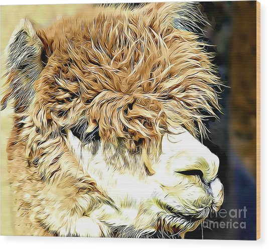 Soft And Shaggy Wood Print