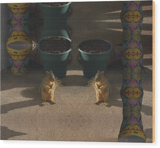 Cute Baby Squirrels On The Porch Wood Print