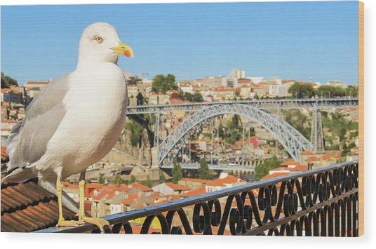 Cute Seagull And Porto's Cityscape Wood Print
