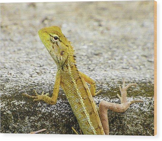 Cute Yellow Lizard Wood Print
