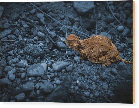 Cyanotype Horned Toad Wood Print