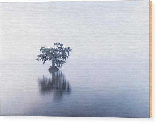 Cypress In Heavy Fog Wood Print