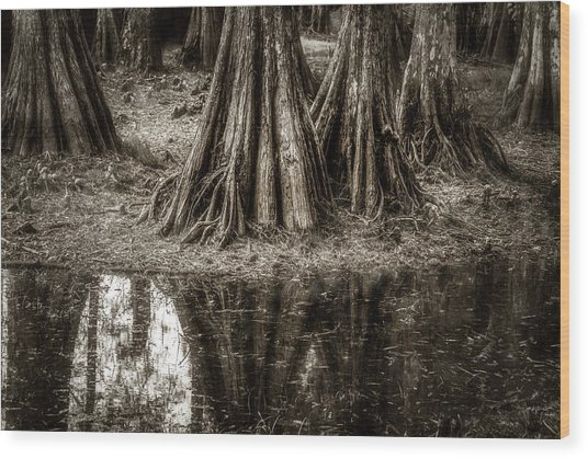 Cypress Island Wood Print