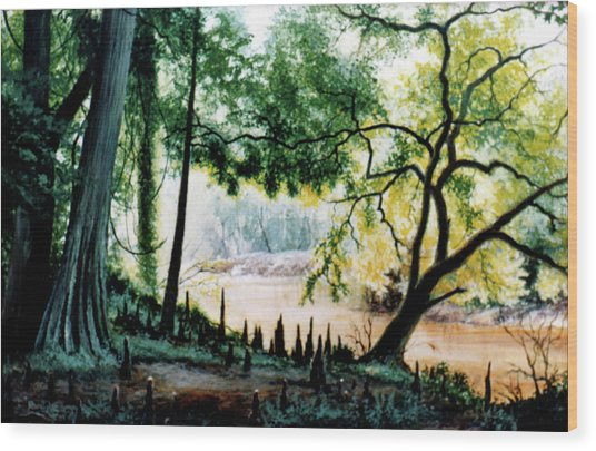 Cypress Knees Wood Print