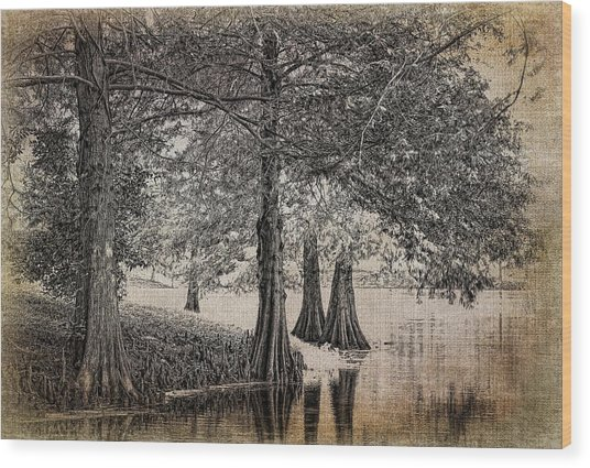 Cypress Retreat Wood Print