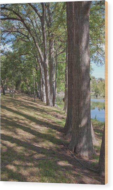 Cypress Shade Wood Print