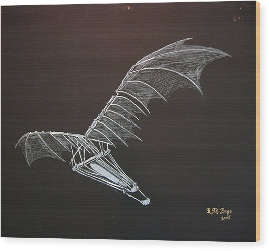 Da Vinci Flying Machine Wood Print