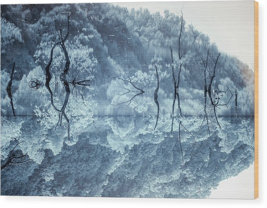 Daejeon Lohas 3 Wood Print