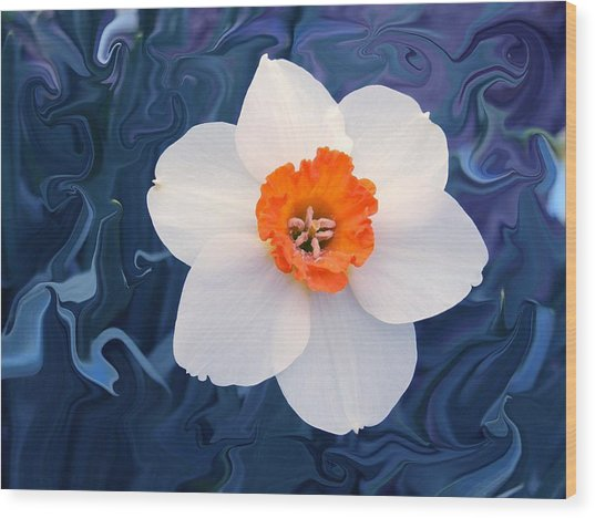 Daffodill In Blue Wood Print