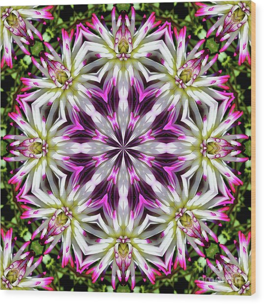 Dahlia Flower Circle Wood Print
