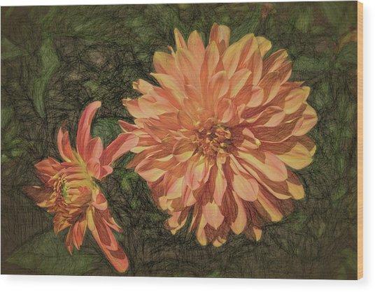 Dahlia Sketch Wood Print