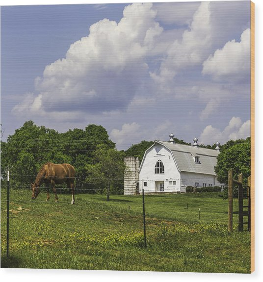 Dairy Barn Panorama 03 Wood Print