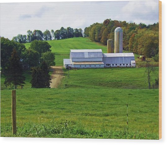 Dairy Country Wood Print