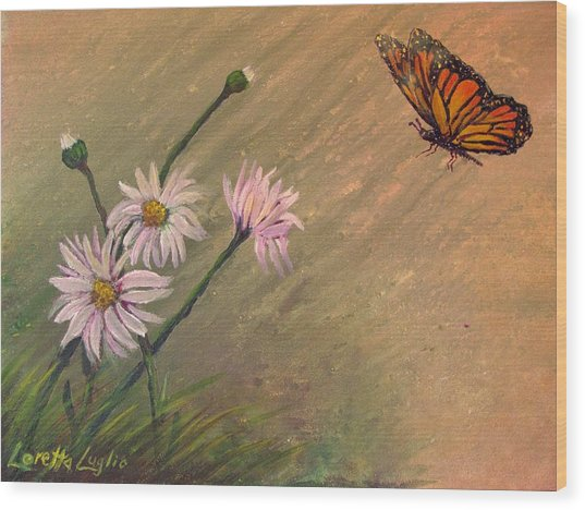 Daisies And Butterfly Wood Print