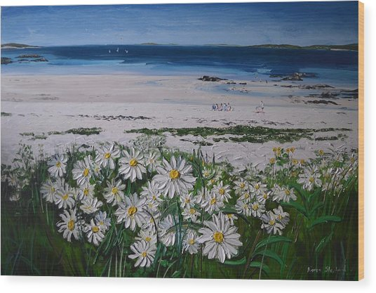 Daisies Connemara Ireland Wood Print
