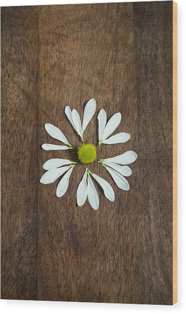 Daisy Petals On Wooden Background  Wood Print