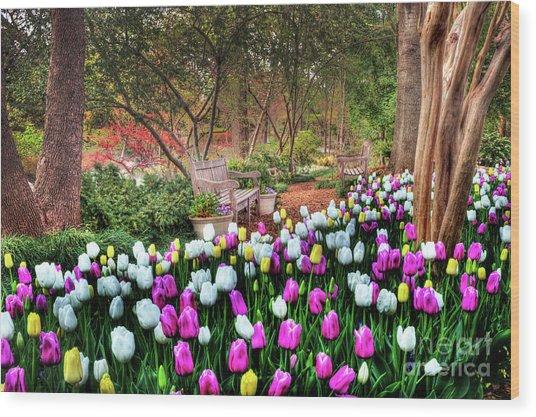 Dallas Arboretum Wood Print