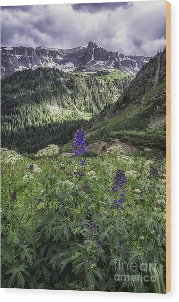 Dallas Peak Wood Print