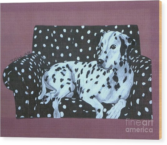 Dalmatian On A Spotted Couch Wood Print by Terri Mills