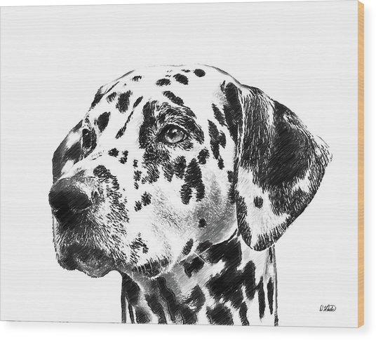 Dalmatians - Dwp765138 Wood Print