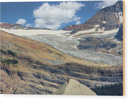 Daly Glacier And Yoho National Park Adventure Wood Print